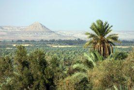 Egypt Siwa oasis tour