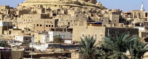Egypt western desert siwa oasis