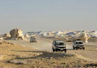 fayoum oasis tours